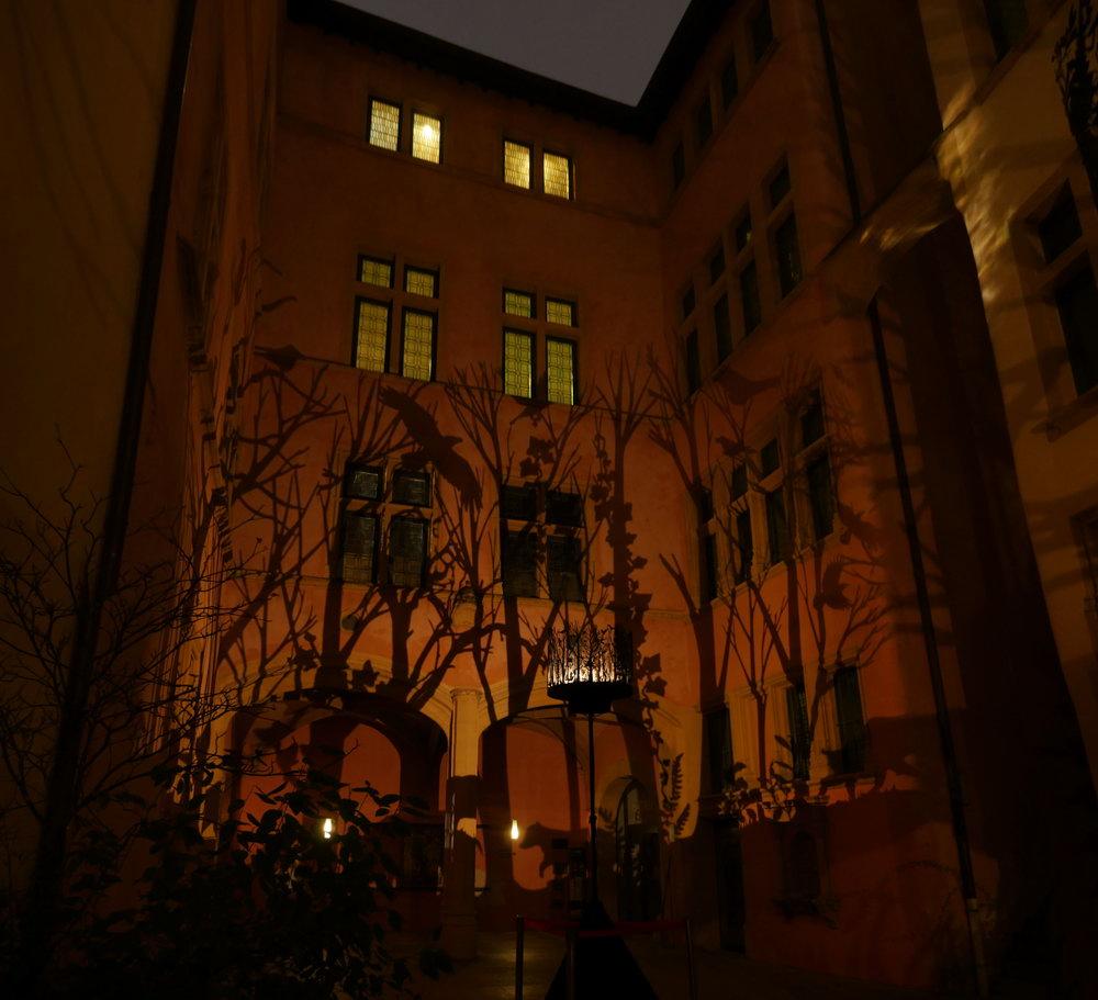 2019-fete-des-lumieres-lyon-nocturne12-julia-dantonnet
